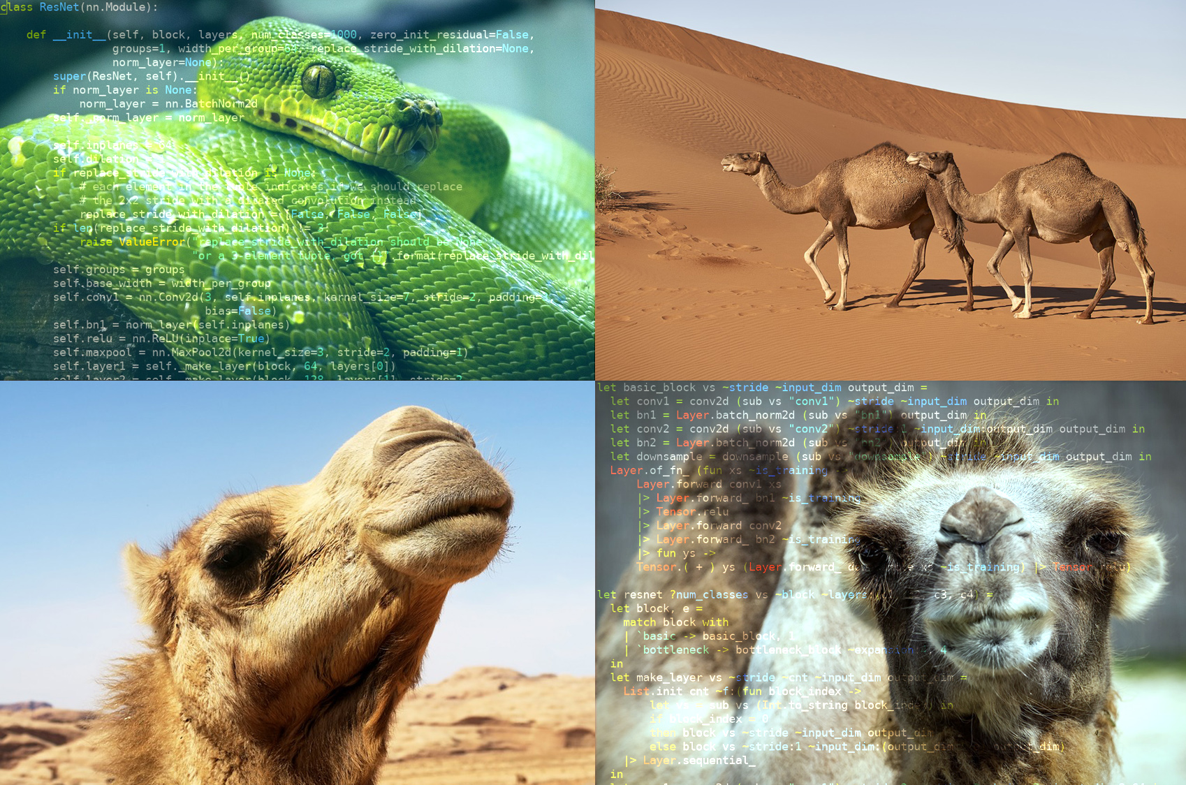 Jane Street Tech Blog - Of Pythons and Camels